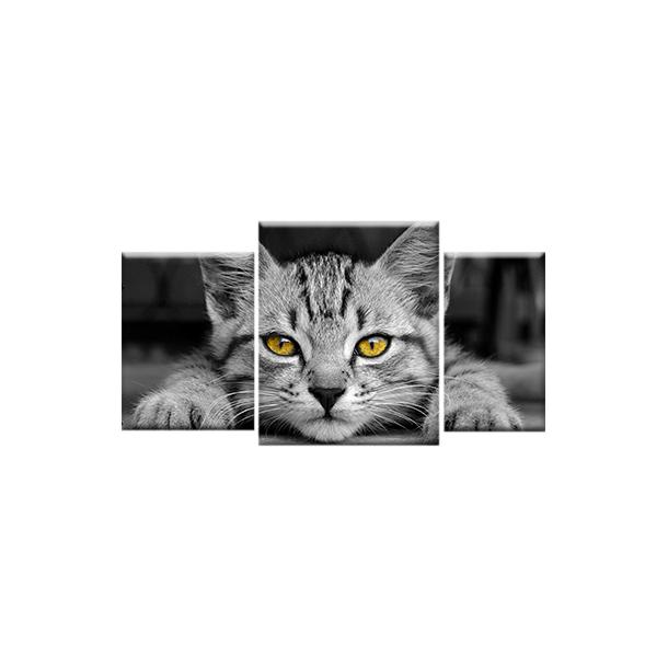 Trojdielny OBRAZ na plátne ANIMALS - vzor 15